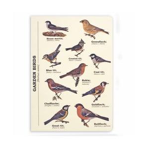 Zápisník Gift Republic Garden Birds, veľ.A5