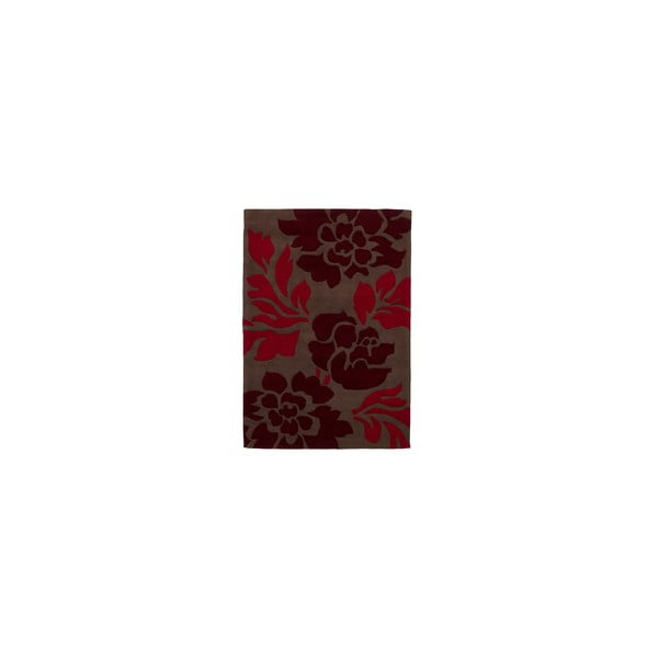 Hnedo-červený koberec Think Rugs Hong Kong Red, 120x170cm
