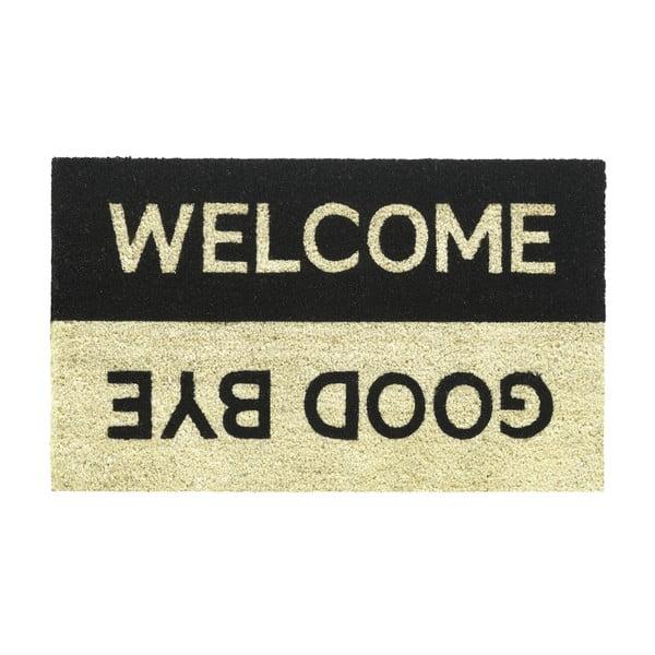 Rohožka Hamat Welcome goodbye, 40x70cm