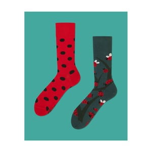 Ponožky Many Mornings Dots and Bugs, veľ.35/38