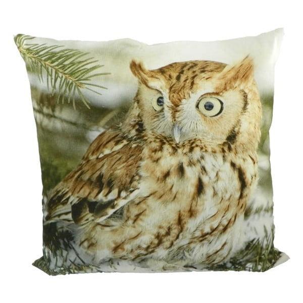 Vankúš Owl 50x50 cm