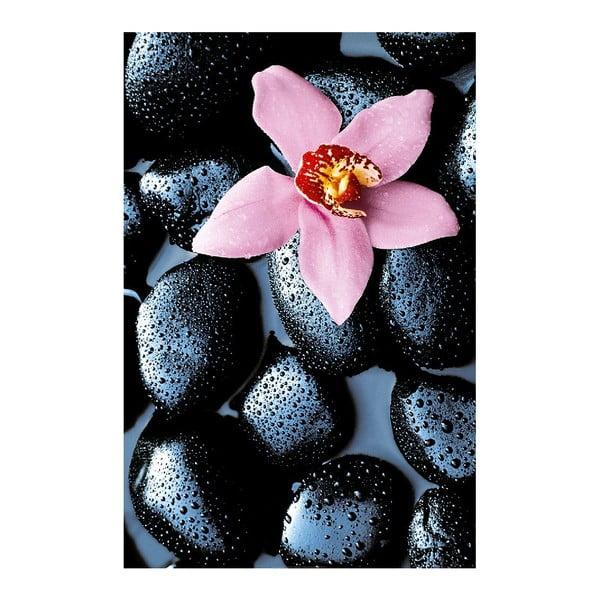 Maxi plagát Stone Orchid, 115x175 cm