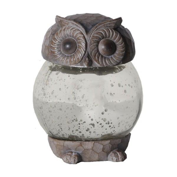 Záhradné svetlo Owl