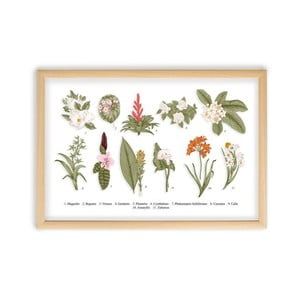 Obraz Surdic Botanical Flowers, 50×70 cm
