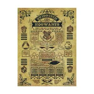 Obraz Pyramid International Harry Potter Quidditch At Hogwarts, 60 × 80 cm