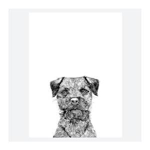 Plagát Baxter The Border Terrier, 30x40 cm