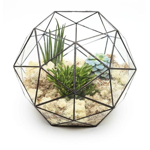 Terárium s rastlinami Super Aztec Hexagon