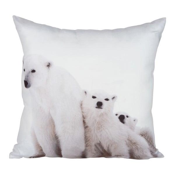 Vankúš Bear White, 45x45 cm