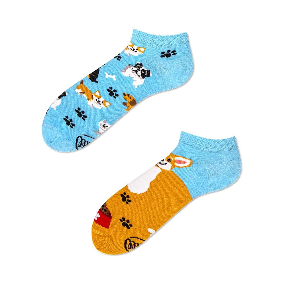 Členkové ponožky Many Mornings Playful Dog, veľ. 39-42