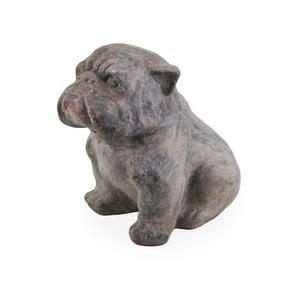 Dekoratívny pes Moycor Marsella