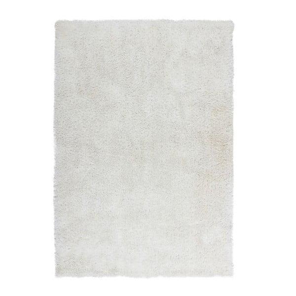 Sivý koberec Kayoom Flash! 500, 150 x 80 cm