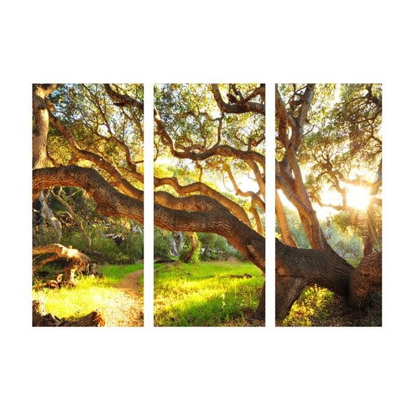 3dielny obraz V prírode