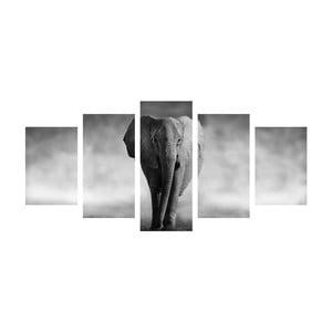 Viacdielny obraz Black&White Elephant