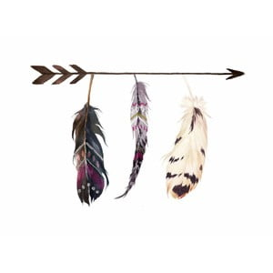 Plagát v drevenom ráme Style feather, 38x28 cm