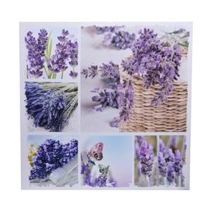 Obraz Lavender Butterfly, 60x60 cm