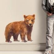 Samolepka na viac použití Bear,  50x46cm