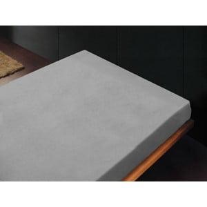Plachta Liso Gris Perla, 240x260 cm