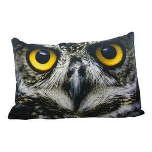 Vankúš Owl 60x40 cm