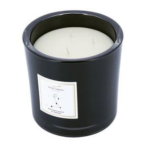 Vonná sviečka v čiernom skle s vôňou bergamotu a lekna Stella Cadente Ryby