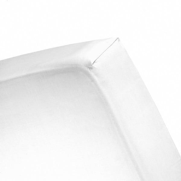 Plachta Cinderella White, 80x200 cm