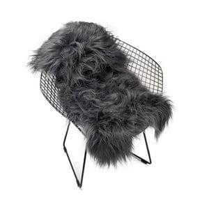 Tmavosivá ovčia kožušina s dlhým vlasom Arctic Fur Chesto, 90 × 50 cm