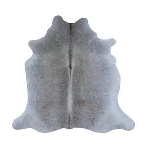 Sivý koberec z hovädzej kože, 195 x 170 cm