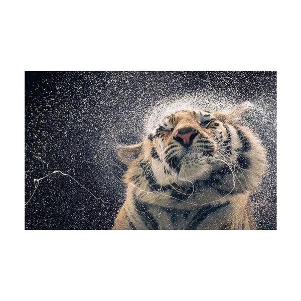 Fotoobraz Wild Beauty, 51x81 cm