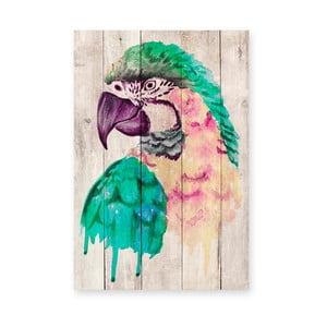 Nástenná dekorácia z borovicového dreva Madre Selva Watercolor Parrot, 60×40 cm