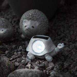Záhradné LED svetlo Turtle