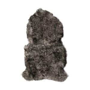 Sivá ovčia kožušina s krátkym vlasom Arctic Fur Lina, 90 × 60 cm