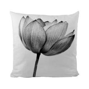 Vankúšik Black Shake Tulip, 50x50 cm