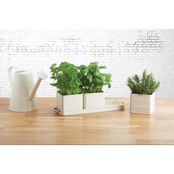 Sada 3 krémových kvetináčov na bylinky Kitchen Craft Living Nostalgia