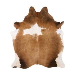 Pravá hovädzia koža Arctic Fur Bardo, 200 × 183 cm