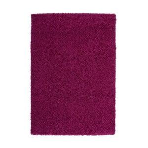 Koberec Perky 278 Purple, 230x160 cm