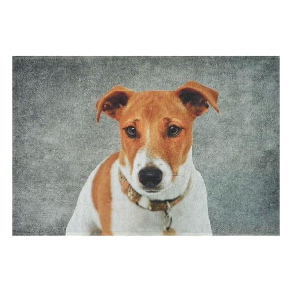 Predložka Jack Russell 75x50 cm