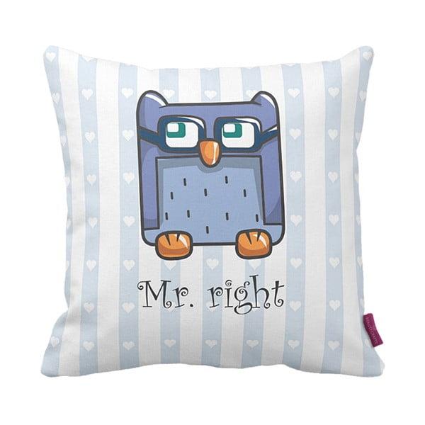 Vankúš Mr Owl, 43x43 cm