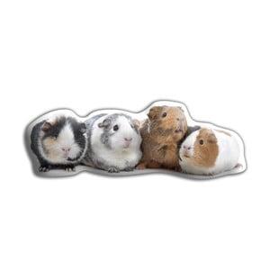 Vankúšik Adorable Cushions Morčatá
