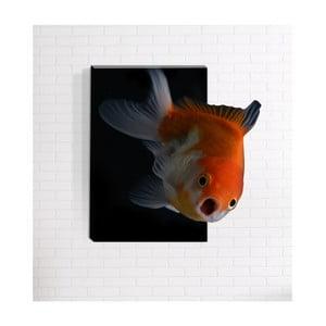 Nástenný 3D obraz Mosticx Nemo, 40 x 60 cm