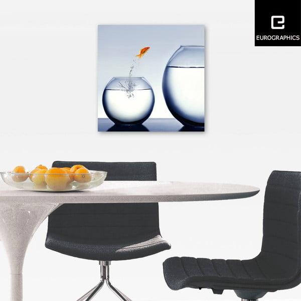 Sklenený obraz Jumping Jack, 50x50 cm