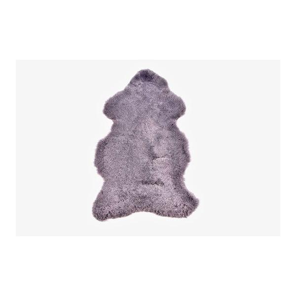 Ovčia kožušina s krátkym chlpom Grey, 100x60 cm