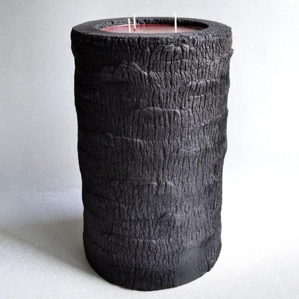 Palmová sviečka Legno Bordeux Bruciato s vôňou exotického ovocia, 80 hodín horenia