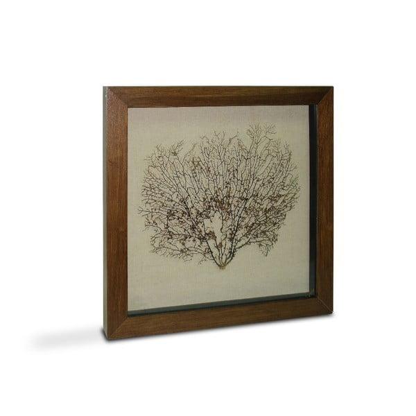 Obrázok Tree Diana, 60x60 cm