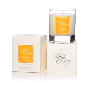 Sviečka s vôňou citrónovej trávy Skye Candles Tumbler, dĺžka horenia 30 hodín
