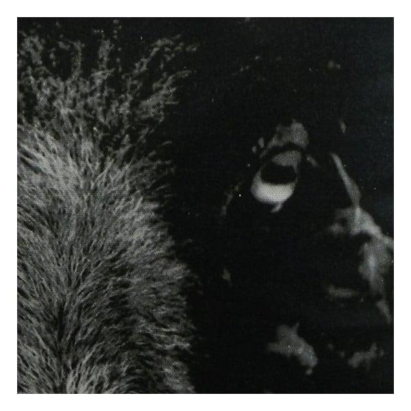Vankúš Sepia Black Sheep 50x50 cm