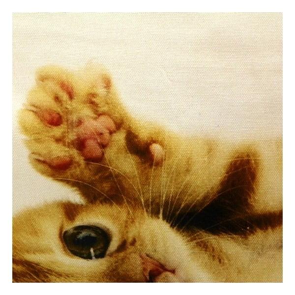 Vankúš Mars&More Kitten, 50 x 50 cm