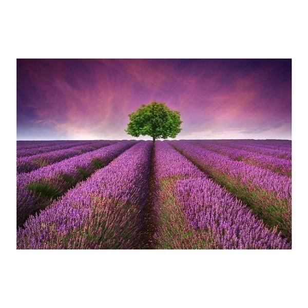 Vinylový koberec Lavender Field,52x75cm