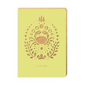 Linajkový zápisník Portico Designs Rak, 160stránok