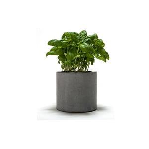 Betonový kvetináč Spicepot 12