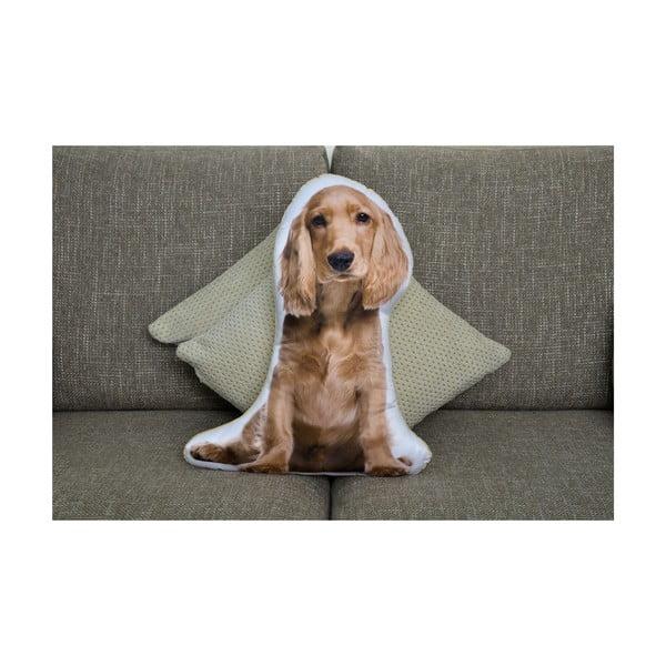 Vankúšik Adorable Cushions Zlatý kavalierik