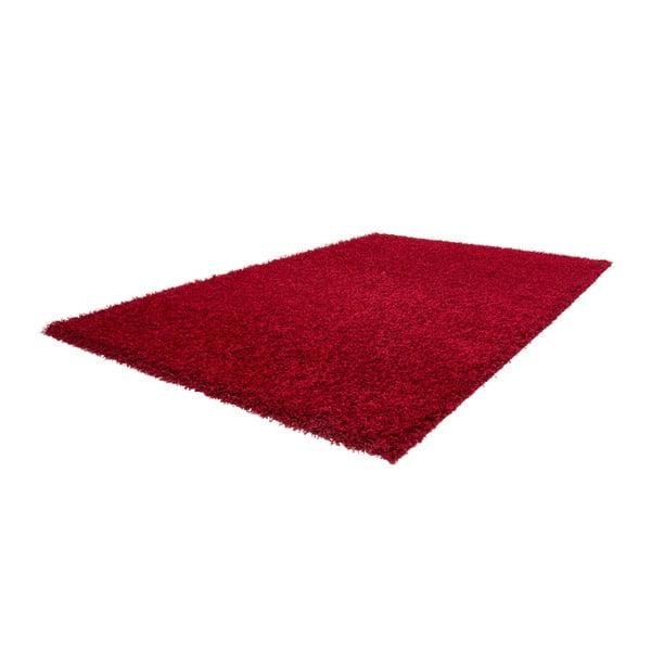 Koberec Guardian Red, 160x230 cm